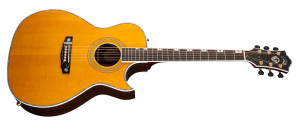 Guild Doyle Dykes Rosewood Artist Signature Series